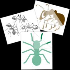 Insect Bug Stickers Car Decals Bees Butterflies Ladybugs More