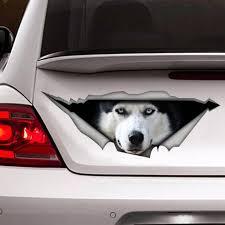 Decal Husky Car Decal Vinyl Decal Car Decoration Pet Etsy