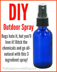 homemade outdoor cing spray bugs
