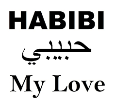 what does habibi mean in arabic quora