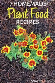 homemade plant food keep your garden
