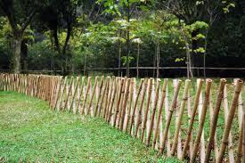 Afbeeldingsresultaat Voor Bamboo Fence Bamboo Garden Diy Garden Fence Fence Design