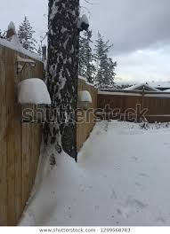 Winter Landscape Snow Covered Garden Two Stock Photo Edit Now 1299568783
