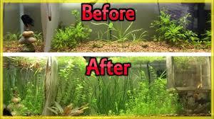 planted aquarium diy root tabs