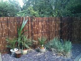 Stunning Home Depot Bamboo Fencing Decor Amp Tips Reed Fencing With Bamboo Fencing For Backyard Fence Backyard Fences Bamboo Fence Backyard Design
