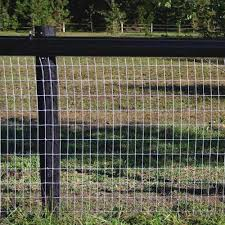 Redbrand Non Climb Wire Mesh Fence Ramm Horse Fencing Stalls