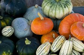 list of winter fruits and vegetables