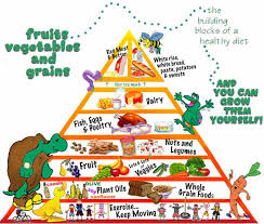 Healthy Eating – Kids Growing Strong