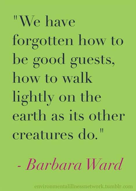 Image result for Quote about being a guest of the earth""
