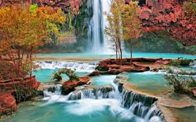 best 5 nature scenery hd wallpapers