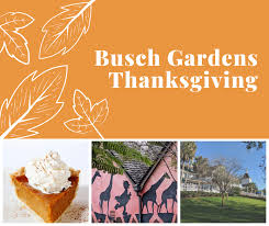thanksgiving at busch gardens tampa