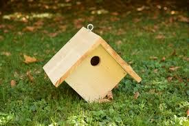 fabriquer un nichoir pour les oiseaux