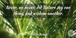 edmund burke never no never did nature say one thing and