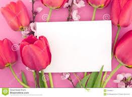 El Ramo De Tulipanes Y De Primavera Rosados Florece En Fondo