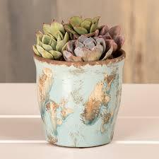 send succulent garden gifts that grow