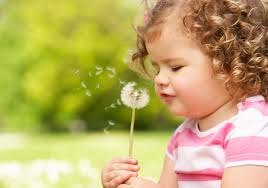 innocent cute baby picture and hd