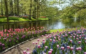 flower garden 图片s summer gardens