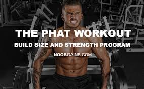 the phat workout layne norton s size