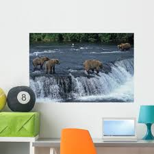 Amazon Com Wallmonkeys Fot 7137799 36 Wm331306 Female Grizzly With Her Cubs At Waterfall Peel And Stick Wall Decals 36 In W X 24 In H Large Home Kitchen