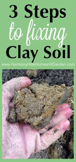3 steps for fixing clay soil harmony