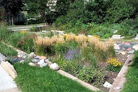 sustainable practices for landscape