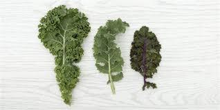 cdc romaine lettuce recall 5 types of