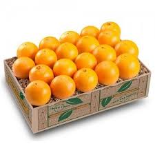 oranges gift baskets by dundee groves