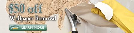 wallpaper removal jacksonville fl