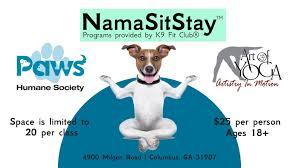 namasitstay yoga with your dog