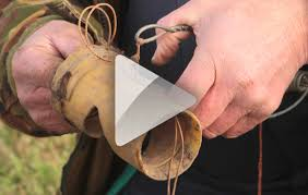 how to make a mole trap shooting uk