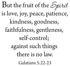 Vwaq But The Fruit Of The Spirit Wall Decal Galatians 5 22 23 Love Joy Peace Contemporary Wall Decals By Vwaq Vinyl Wall Art Quotes And Prints