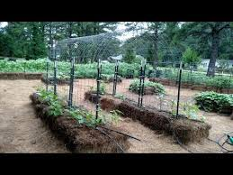 Bale Garden Cattle Panel Arched Trellis And Trellis Tunnels Youtube
