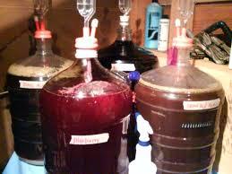 awesome blueberry wine homebrewtalk