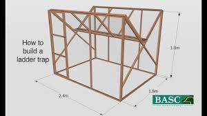 how to build a ladder trap you