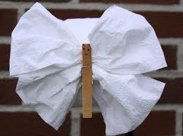 diy toilet tissue origami crafts