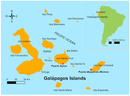 IJERPH | Free Full-Text | Socio-Ecological Factors Associated with Dengue  Risk and Aedes aegypti Presence in the Galápagos Islands, Ecuador