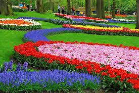 صور حديقة Keukenhof اجمل المناظر الطبيعية في هولندا صوري