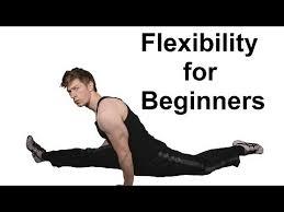 10 minute beginner flexibility training