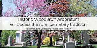 woodlawn embos the rural cemetery