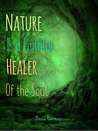 becca hartress nature lover quotes nature quotes healer quotes
