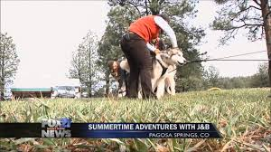 Summertime Adventure Series: Pagosa Dogsled Adventures - YouTube