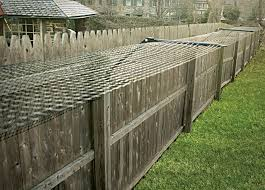 Existing Fence Conversion System Purrfect Fence Cat Fence Cat Proofing Fence Toppers
