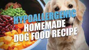 hypoallergenic homemade dog food recipe