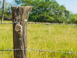 Close Up Detail Of Farm Fence Post With Barbed Wire And Grass Stock Photo Picture And Royalty Free Image Image 88242545