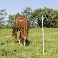 Powerposts Portable Fence Posts Portable Fence Horse Fencing Fence