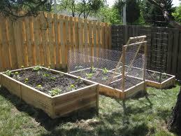 Vegetable Garden Along Fence Video And Photos Madlonsbigbear Com