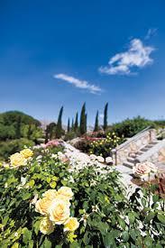 el paso munil rose garden texas