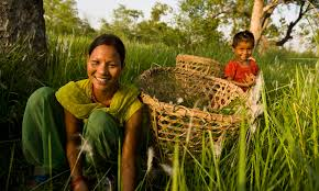 Image result for women and the environment