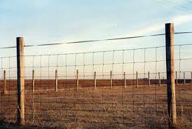 The Land Of The Free How Virtual Fences Will Transform Rural America The Atlantic