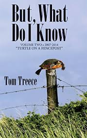 But What Do I Know Vol 2 Turtle On A Fencepost Kindle Edition By Treece Tom Literature Fiction Kindle Ebooks Amazon Com